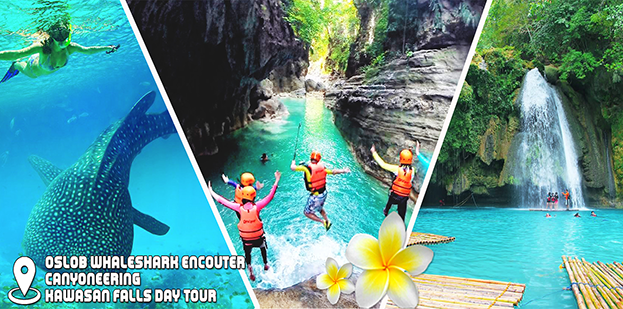 Cebu Oslob Whaleshark Encounter + Canyoneering + Kawasan Falls Day Tour Bohol Cebu Tours HRI Gal 2